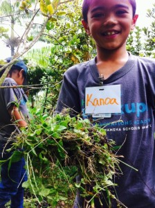 Big weed pulling for Innovations Academy Students web