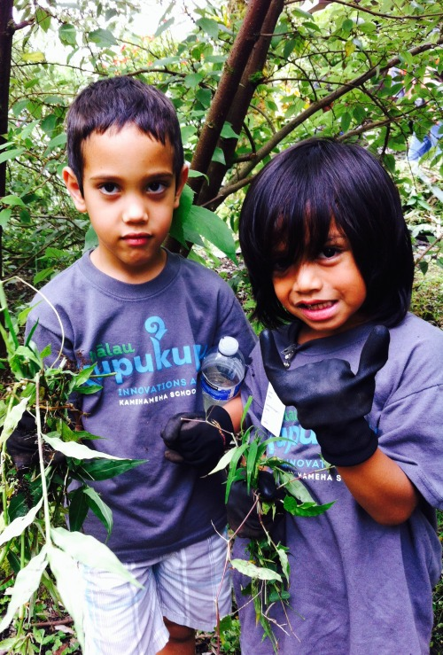 Innovations Academy Students pulling weeds together web